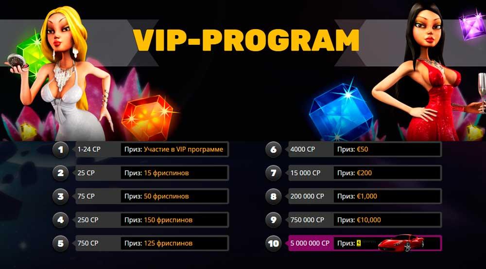 Описание VIP программы