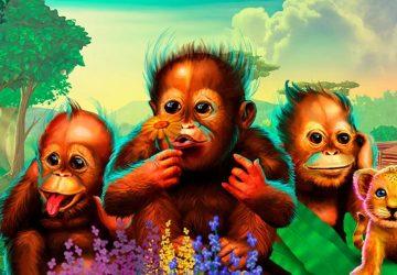 Monkey see, Monkey hear, Monkey speak!