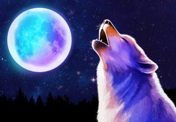 Лунная жемчужина