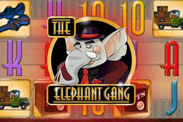 The Elephant Gang
