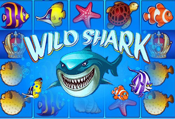 Игровые автоматы акула бесплатно и без регистрации как в игровом автомате достать мягкую игрушку